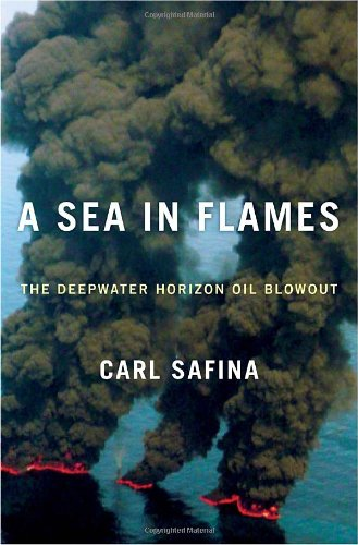 A Sea in Flames: The Deepwater Horizon Oil Blowout