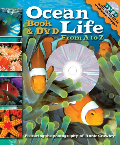 Ocean Life: From A to Z [With DVD]