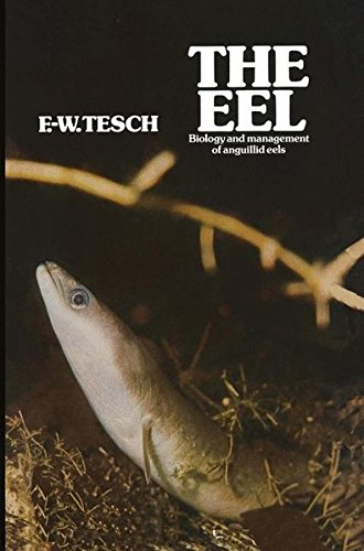 The Eel: Biology and Management of Anguillid Eels